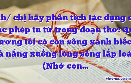 Anh/ chị hãy phân tích tác dụng của các phép tu từ trong đoạn thơ: Quê hương tôi có con sông xanh biếc… Toả nắng xuống lòng sông lấp loáng (Nhớ con…