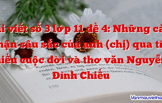 Bài viết số 3 lớp 11 đề 4:Những cảm nhận sâu sắc của anh (chị) qua tìm hiểu cuộc đời và thơ văn Nguyễn Đình Chiểu