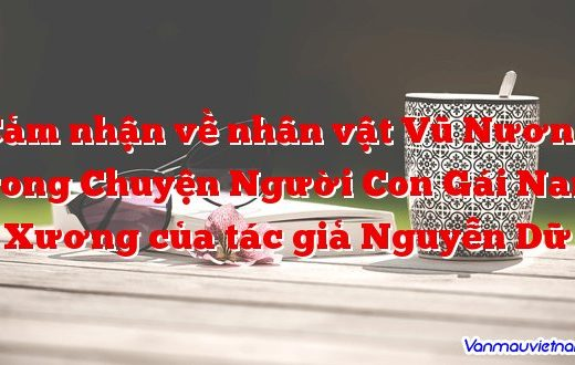 Cảm nhận về nhân vật Vũ Nương trong Chuyện Người Con Gái Nam Xương của tác giả Nguyễn Dữ