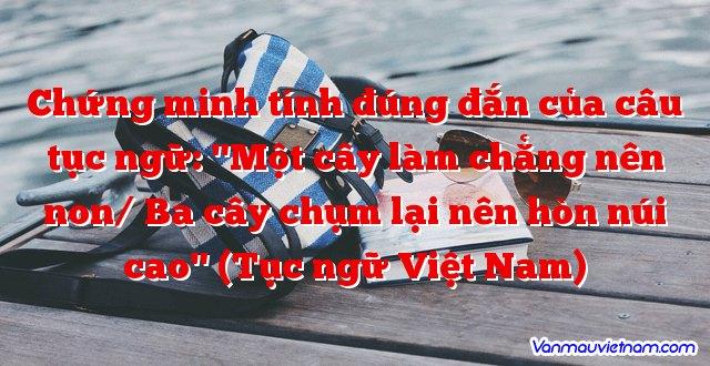 """Chứng minh tính đúng đắn của câu tục ngữ: """"Một cây làm chẳng nên non/ Ba cây chụm lại nên hòn núi cao"""" (Tục ngữ Việt Nam)"""