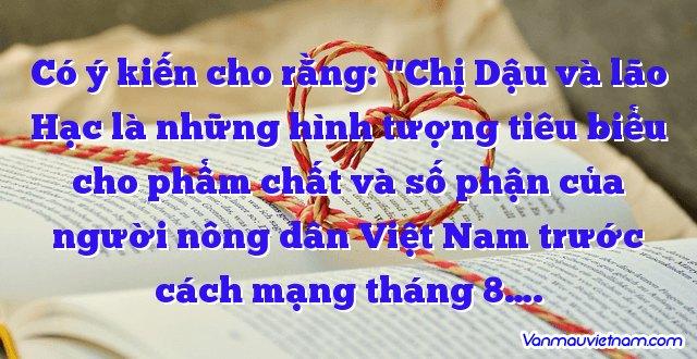 """Có ý kiến cho rằng: """"Chị Dậu và lão Hạc là những hình tượng tiêu biểu cho phẩm chất và số phận của người nông dân Việt Nam trước cách mạng tháng 8…."""