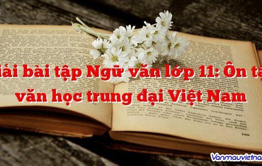 Giải bài tập Ngữ văn lớp 11: Ôn tập văn học trung đại Việt Nam