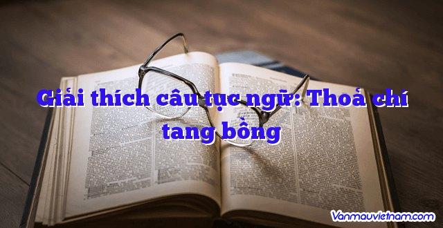 Giải Thích Câu Tục Ngữ: Thoả Chí Tang Bồng