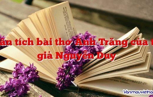 Phân tích bài thơ Ánh Trăng của tác giả Nguyễn Duy