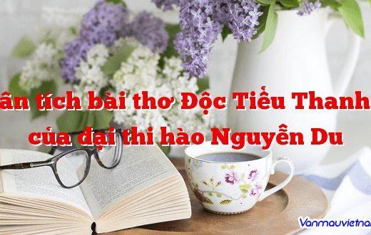 Phân tích bài thơ Độc Tiểu Thanh Kí của đại thi hào Nguyễn Du
