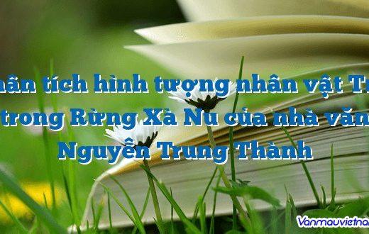Phân tích hình tượng nhân vật Tnú trong Rừng Xà Nu của nhà văn Nguyễn Trung Thành