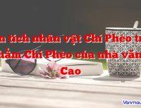 phan tich nhan vat chi pheo trong tac pham chi pheo cua nha van nam cao 200x153 - Trang chủ