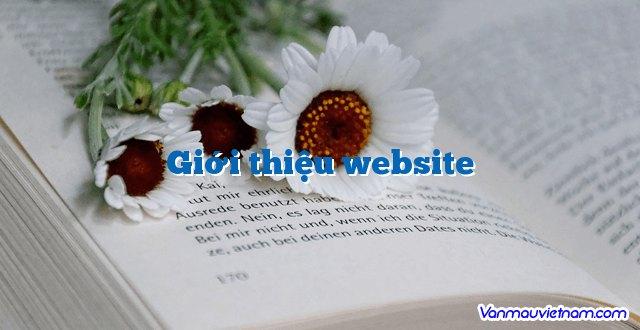 Giới thiệu website